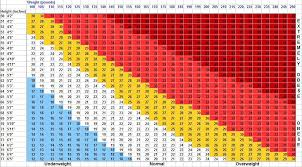 Woman 2016 Bmi Chart Bmi Chart For Women By Age Details Weight Loss Surgery