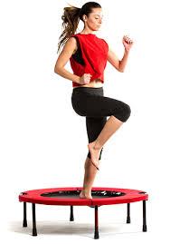 Image result for rebounder trampoline