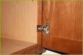 Kitchen Cabinet Hinges Concealed S Replacing Kitchen Cabinet Hinges