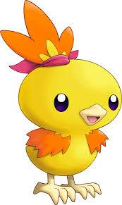 Pokemon 2255 Shiny Torchic Pokedex Evolution Moves