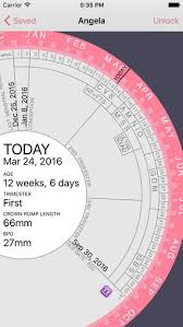 Pin On Pregnancy Wheel