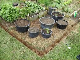 Vegetable Garden Plans Layout Diagram Plant List  The Old Container Garden Plans