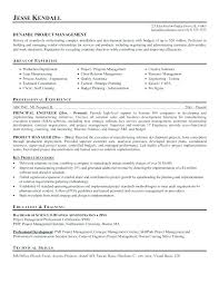 Resume Buzz Words Project Management Resume Buzzwords Project