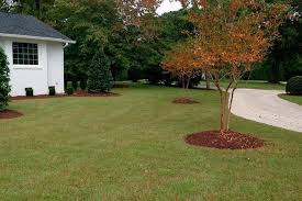 lawn care fayetteville nc. Fine Care Snowu0027s Landscaping U0026 Lawncare  Lawn Maintenance Intended Care Fayetteville Nc O