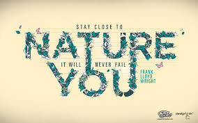 Nature Leaves Design Quotes Typography Simple Background Environment