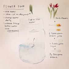 diy flower food 7 tricks to make flowers last forever diy your life flowers