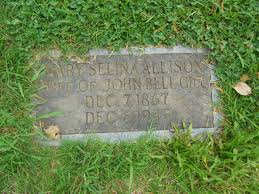 """Mary Selina """"Lina"""" Allison Gill (1867-1945) - Find A Grave Memorial"""
