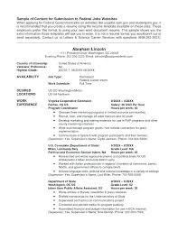 Resumes For Government Jobs Government Resume Example Writing A ...