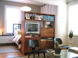Apartment,Classic Wooden Room Divider With TV Cabinet And Book Shelves  Ideas For Studio Apartment Decorations,Studio Apartments Room Dividers  Inspirations