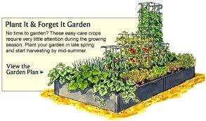 garden layout plans. How To Plan A Small Garden Layout Stunning Vegetable Planner Design . Plans T