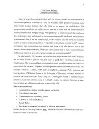 paragraph writing a concept essay examples basic essay cover letter personality profile essay doc pageprofile essays examples print informative
