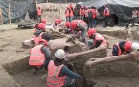 Más hallazgos de fósiles de mamut en aeropuerto de Santa Lucía