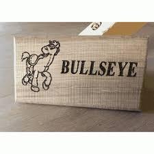 toy story bullseye personalised door