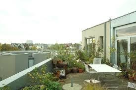 35 best terrace gardening ideas