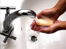 Реферат Адаптация паразитов Как выглядят глисты у человека картинки глистов в кале