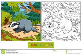 Small Picture Coloring Book badger And Background Stock Vector Image 64574266