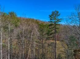 <b>10 Bear Hollow</b> Way, Cherry Log, GA 30522 | MLS #302665 | Zillow