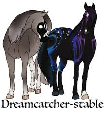 Dream Catcher Stables DreamCatcherStable DeviantArt 46