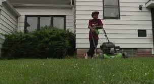 12-year-old boy's lawn business booming after neighbors call the police |  Fox 59