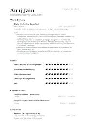 Sample Marketing Consultant Resume Sample Marketing Consultant ...