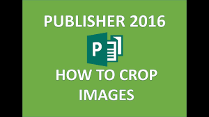 Publisher 2016 Fill A Shape With A Picture And Crop