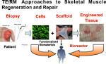 regenerative medicine impact factor