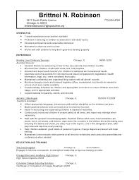 objective for resume for child care example resume objective career  objective resume example sample sample customer