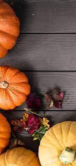 Pumpkin wallpapers for iPhone: download ...