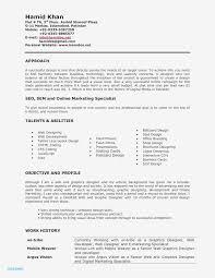 Digital Marketing Resume Template Free Digital Marketing Resume