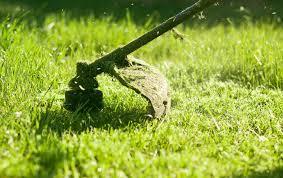 Lawn Maintenance Lawncare Net Lawncare Net