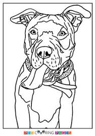 Bull Terrier Coloring Pages At Getdrawingscom Free For Personal