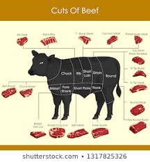 Different Cuts Of Beef Chart Royalty Free Beef Chart Stock Images Photos Vectors