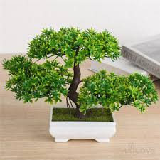 office bonsai tree. Contemporary Office Image Is Loading 18cmGreenBonsaiTreeinSquarePotArtificial Throughout Office Bonsai Tree A