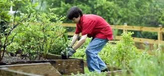 tips for engaging kids with gardening