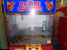 Lobster Vending Machine For Sale
