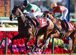 Derby Dam Tide Chart Japanese Derby Hero Wins St Leger Prep Tdn Thoroughbred