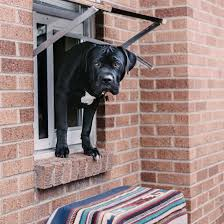 electronic dog doors. Electronic Pet Door Dog Doors E