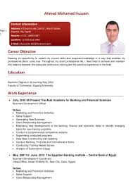 Nice Resume English Language Skills Pictures Inspiration Entry