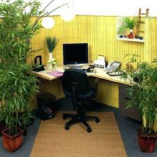 Ideas To Decorate My Office Cubicle Your