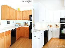 kitchen cabinets makeover before after kitchen cabinets before and after kitchen cabinet makeover ideas paint