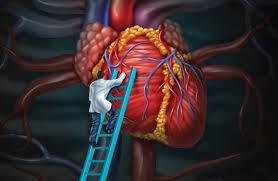Tá động giữa thuốc điều trị bệnh tim mạch và bệnh hen