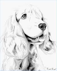 Disegnare Un Cane Disegni Da Colorare Dei Cani Art T Jaspooleblogcom