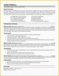 Generic Objective For Resume Mesmerizing Resume Professional Summary Best Resume Writing Programs General