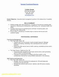 50 Inspirational Summary Examples For Resume Awesome Resume