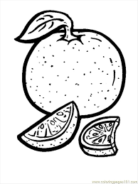Small Picture Orange Coloring Page Free Oranges Coloring Pages
