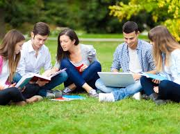 the classification of families sociology essay