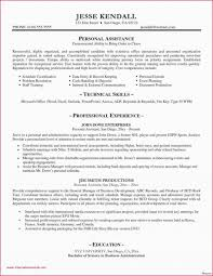 Template It Resume Samples Cover Letter Excellent Resumes Sample For
