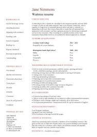 Professional Summary For Resume No Work Experience No Experience Waitress Resume Student Resume Job Resume