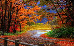 Free download Autumn Wallpaper Hd ...