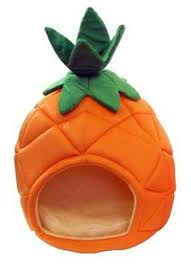 pineapple novelty pet bed